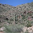 Tucsonsept2005_055