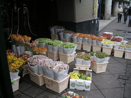 Amsterdam_april2005_022