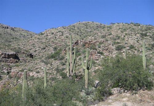 Tucsonsept2005_001