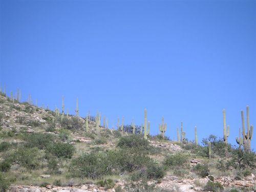 Tucsonsept2005_002