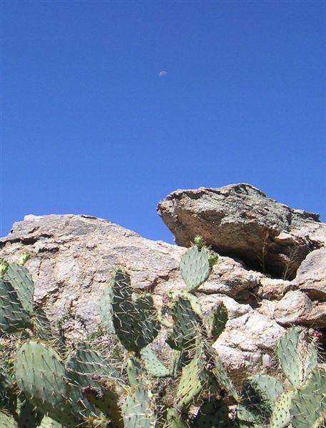 Tucsonsept2005_014