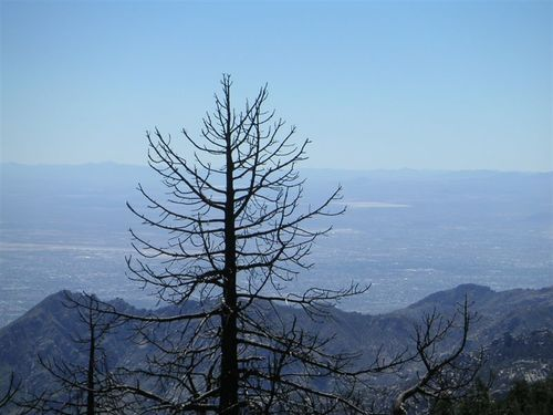 Tucsonsept2005_040