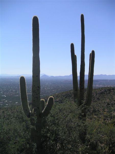 Tucsonsept2005_058